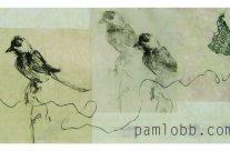 Pam Lobb